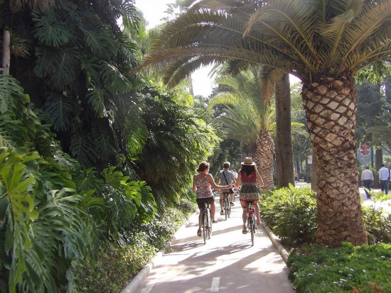 Malaga Highlights Bike Tour