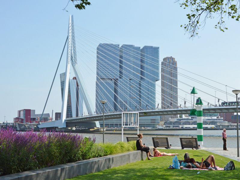 Rotterdam Fietstour: alle highlights