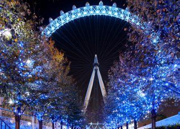 Londen Avond Fietstour