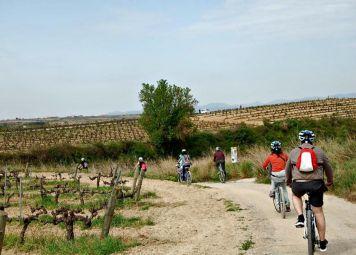 Barcelona Wijnproeverij: Fietsexcursie in de Penedès