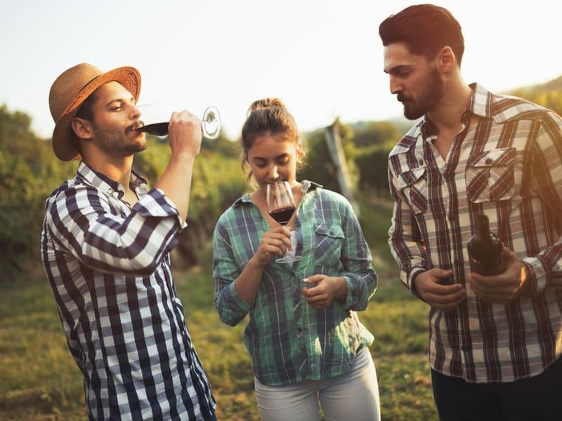 Douro Tal Wein Tour inkl. Mittagessen