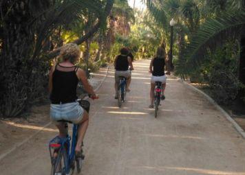 Alicante Rondleiding met Privegids