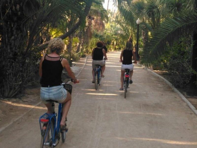 Alicante Fahrradtour + Fahrradverleih