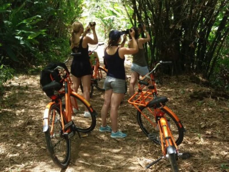 Paramaribo Highlights Fahrradtour
