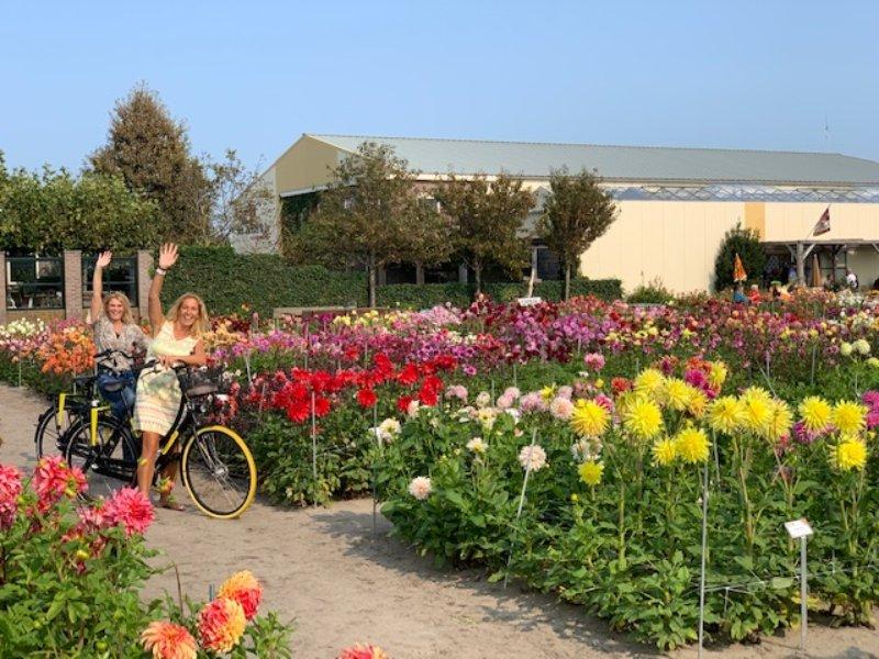 Dahlien Fahrradtour