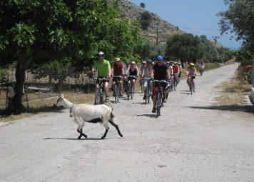 Bodrum fietstocht: de omgeving